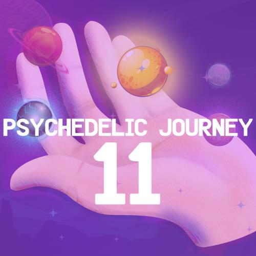 Various Performers - Psychedelic Journey 11 (2021)