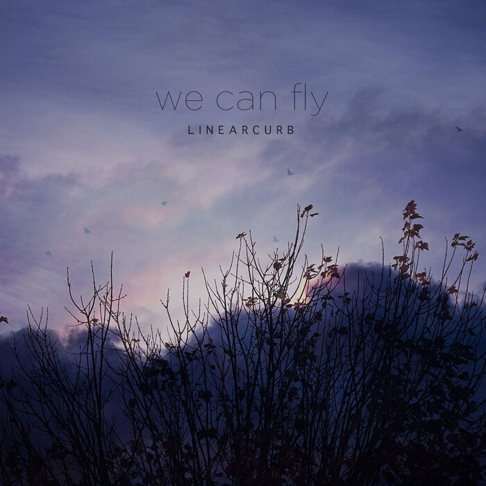 Linear Curb - We Can Fly (2021)