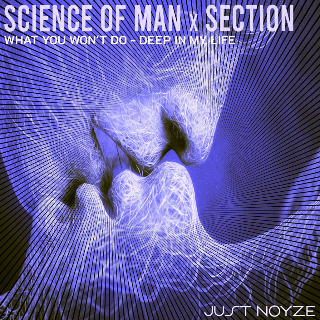 Section & Science Of Man - What You Wont Do (2021)