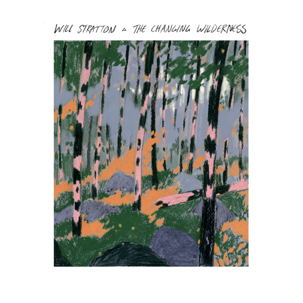 Will Stratton - The Changing Wilderness (2021)