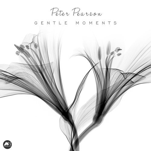 Peter Pearson - Gentle Moments (2021)
