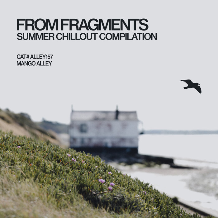 Various Performers - From Fragments (2021)