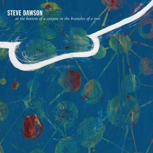 Steve Dawson - At the Bottom of a Canyon in the Branches of a Tree (2021)