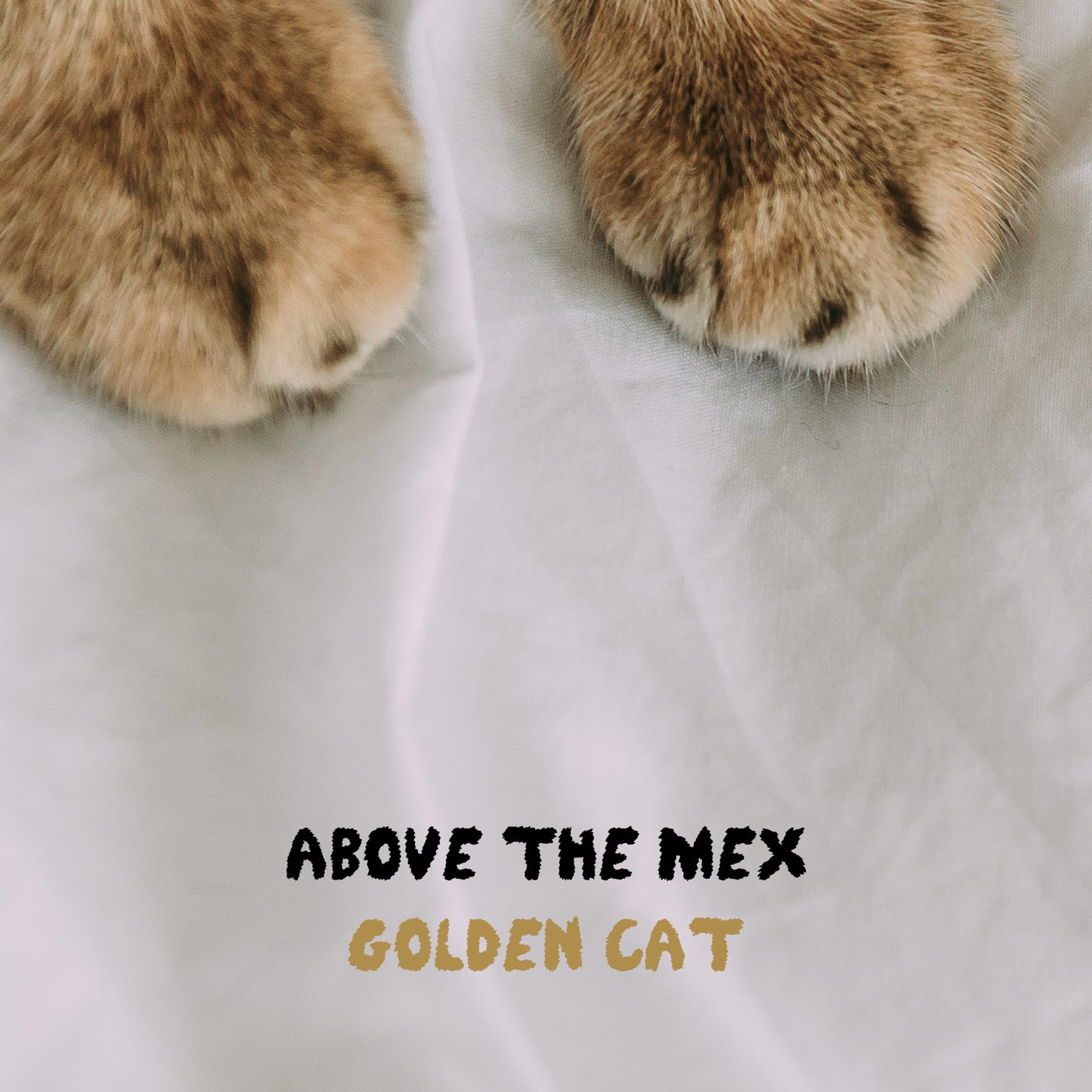 Above the Mex - Golden Cat (2021)