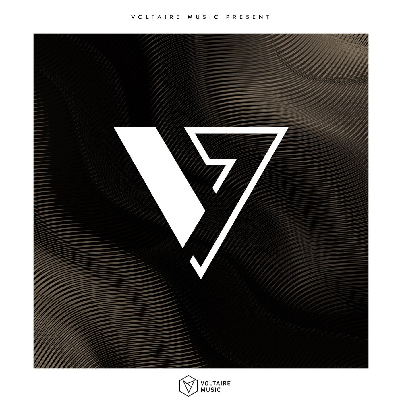 Various Performers - Voltaire Music Pres. V - Issue 39 (2021)