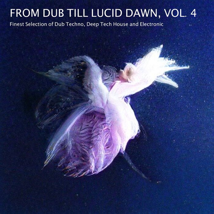 Various Performers - From Dub Till Lucid Dawn, Vol. 4 - Finest Selection of Dub Techno, Deep Tech House and Electronic (2021)