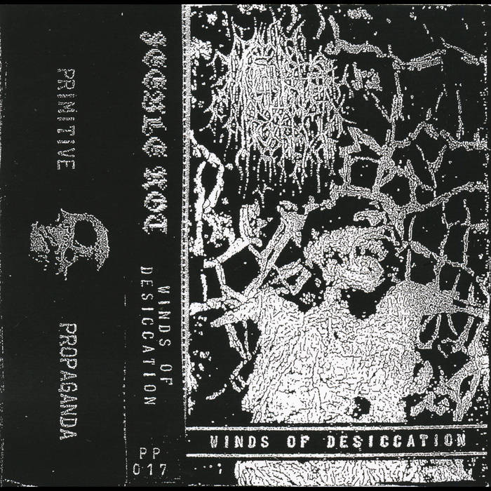 Feeble Rot - Winds Of Desiccation (2021)