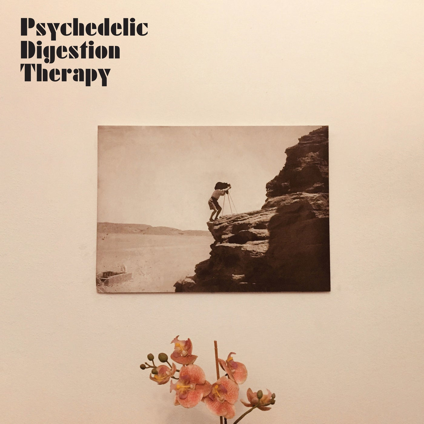 Psychedelic Digestion Therapy - Psychedelic Digestion Therapy (2021)